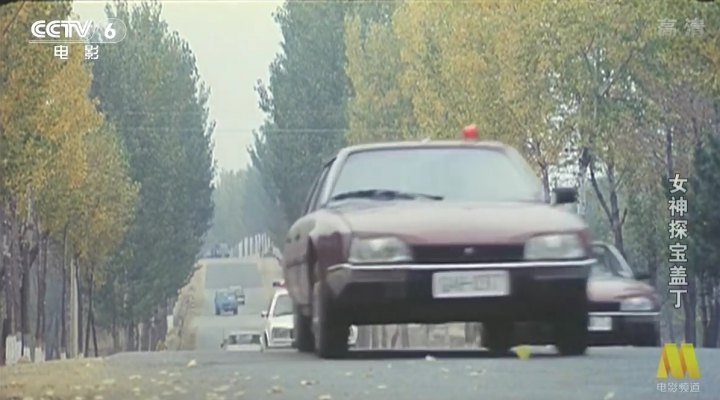 IMCDb.org: 1983 Citroën CX 20 TRE Série 1 in Le marginal