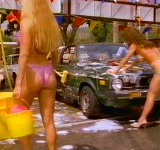 Bikini Car Wash Company 20