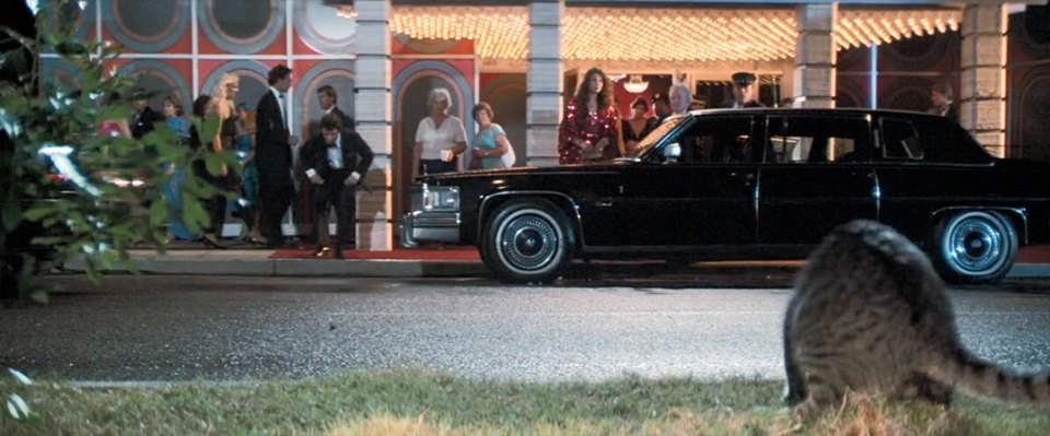 1978 Cadillac Fleetwood Limousine