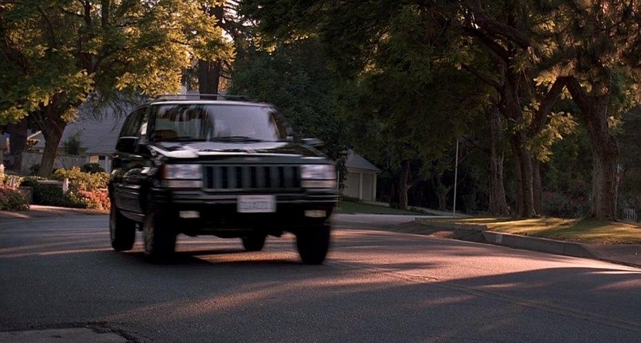 IMCDb.org: 1996 Jeep Grand Cherokee Limited [ZJ] in Marsh