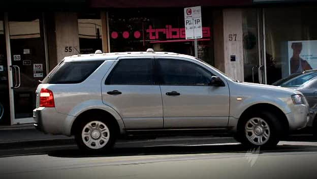 2004 Ford Territory TX [SX]