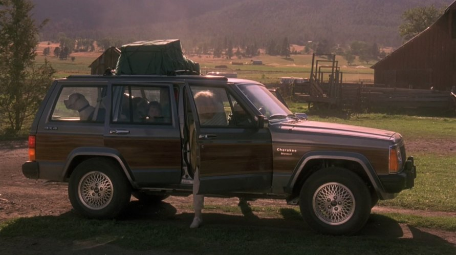 Homeward Bound The Incredible Journey 1993 Movieeductr