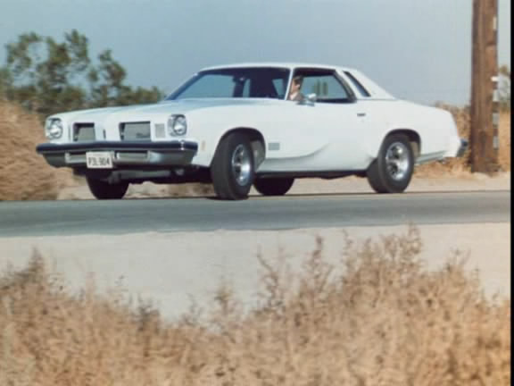1974 Oldsmobile Cutlass Supreme Colonnade Hardtop Coupe