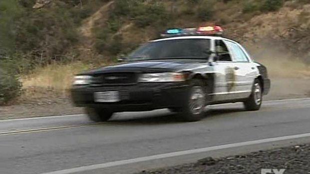 IMCDborg Ford Crown Victoria Police Interceptor P In - 2001 crown victoria