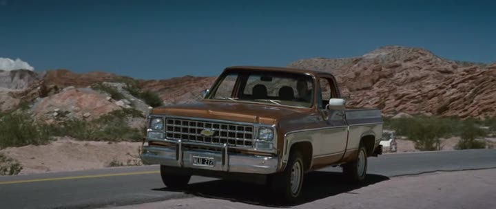 1980 Chevrolet C-10 Cheyenne Fleetside