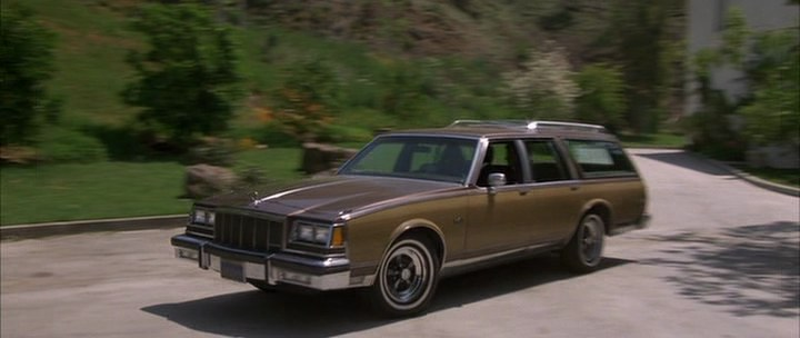 1981 Buick Electra Estate Wagon