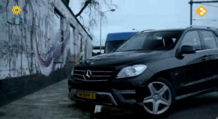 2012 mercedes benz ml 250 bluetec 4matic w166 in flikken maastricht de overloper. Black Bedroom Furniture Sets. Home Design Ideas