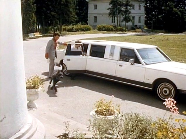 1989 Lincoln Town Car Stretched Limousine Armbruster/Stageway 'Silverhawk'