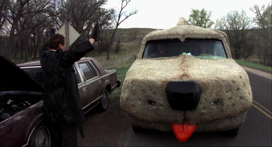 это тупой и еще тупее машина собака картинки цветочки имеют несравненный