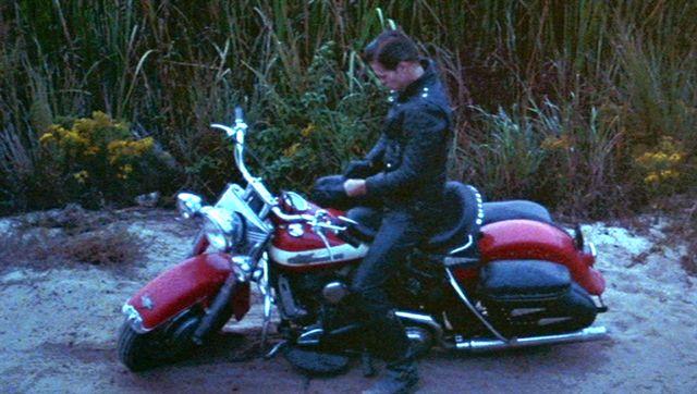 Harley-Davidson Hydra Glide Panhead