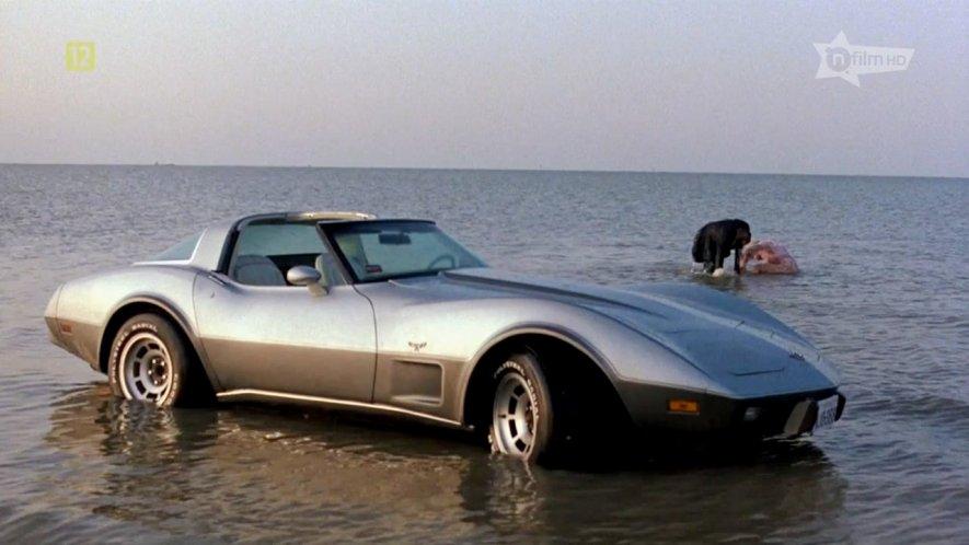 """1982 Corvette For Sale >> IMCDb.org: 1978 Chevrolet Corvette C3 in """"Terms of ..."""